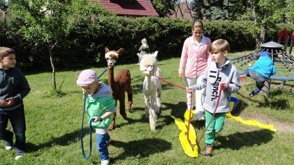 therapietiere für kinder